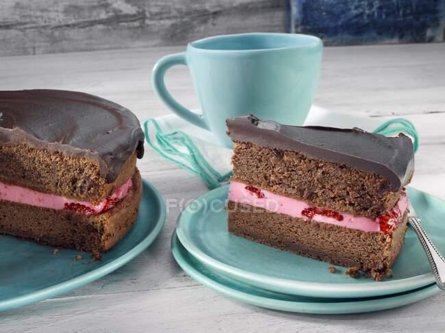 Gros plan de délicieux gâteau aux framboises au chocolat — Photo de stock