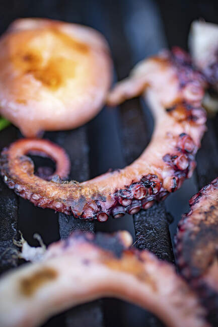 Grilled octopus and scallops — Stock Photo