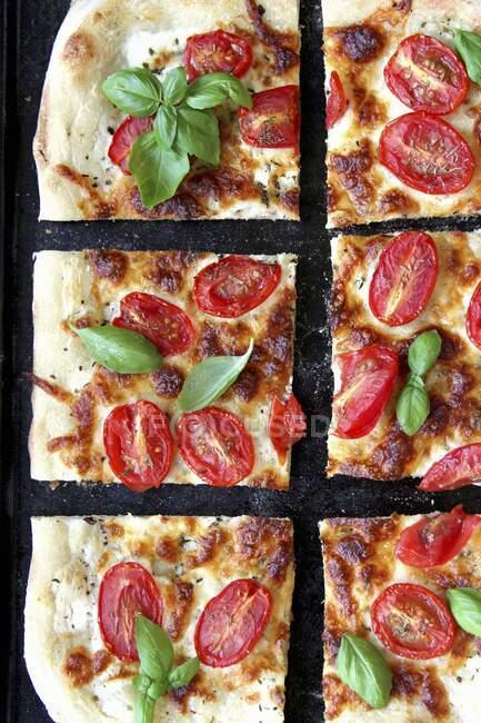 Pizza vegetariana com tomate e manjericão fresco — Fotografia de Stock