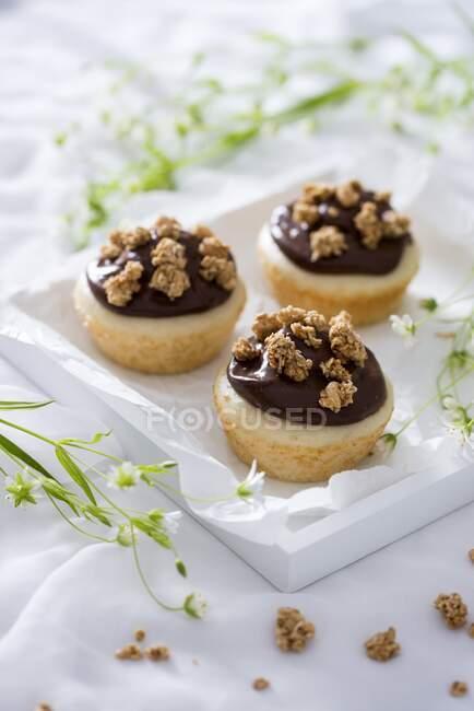 Овочі ванільні кекси з шоколадним пудингом і муеслі. — стокове фото