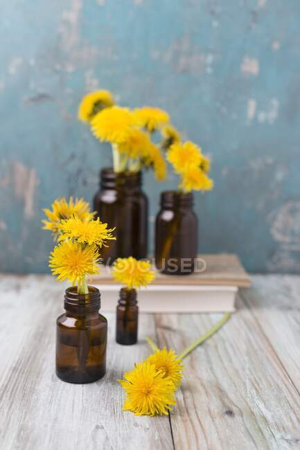 Flores de diente de león en pequeños frascos de medicina - foto de stock
