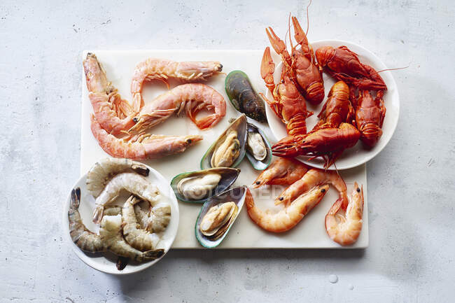 Assortment of various raw seafood - shrimps, kiwi mussels, squid and crawfish — Stock Photo