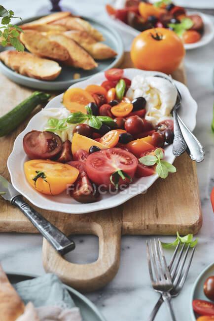Пластівка для салату капрез з помідорами, мозареллою, базилем, крутонами та маслинами. — стокове фото