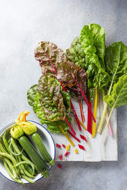 Bietola arcobaleno, zucchine e fagioli dal giardino — Foto stock