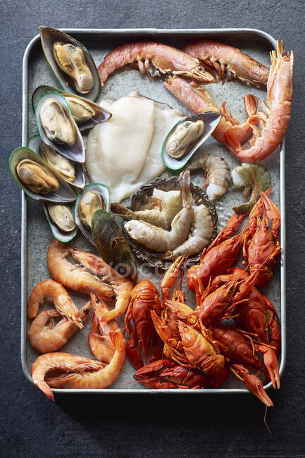 Asssortment of various raw seafood - shrimps, kiwi mussels, squid and crawfish — Stock Photo