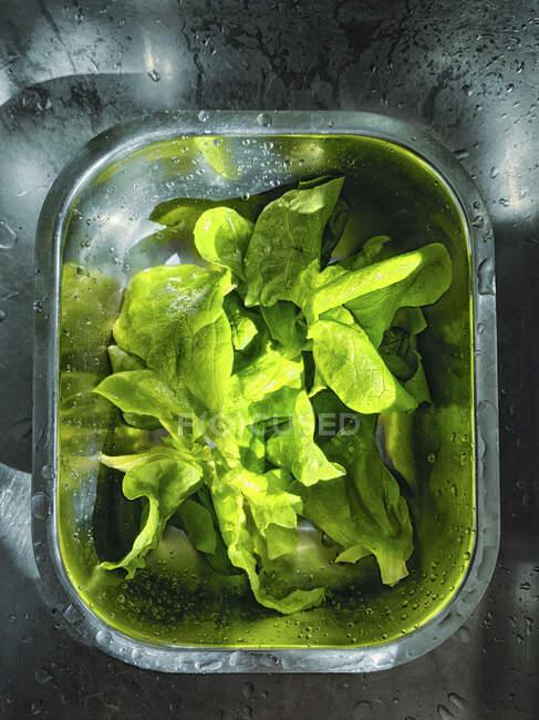 Insalata verde fresca in un barattolo di vetro su sfondo nero. — Foto stock