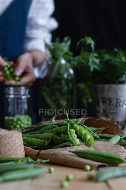 Жінка готує свіжий горох для збереження. — стокове фото