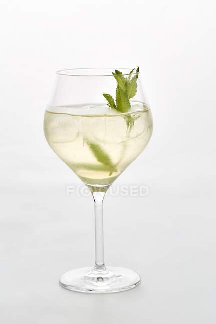 Um copo de Hugo (prosecco com hortelã e xarope de sabugueiro) — Fotografia de Stock