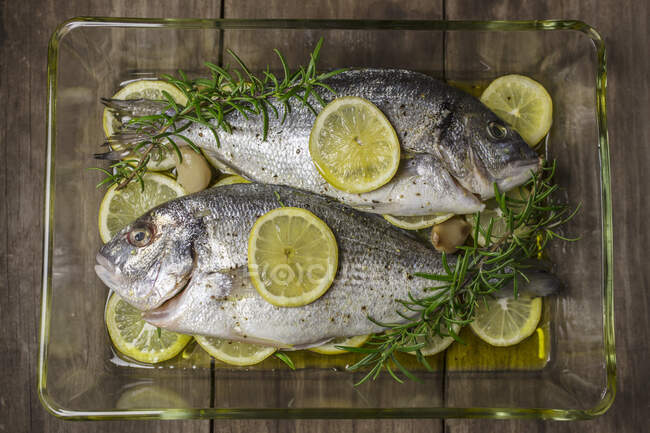 Fresh seabream with lemon slices and rosemary — Stock Photo