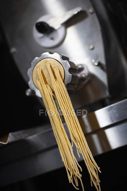 Виготовлення пасти: лінгвін на промисловій макаронні. — стокове фото