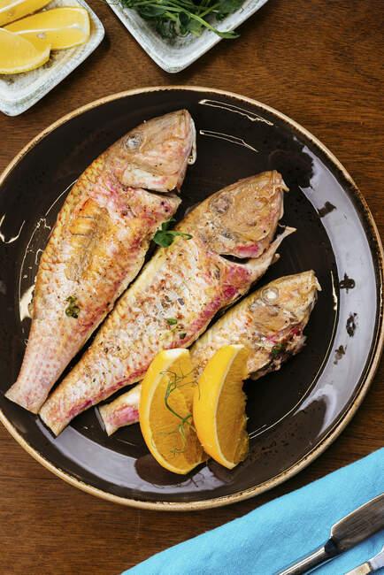 Peixe grelhado com ervas e fatias de limão — Fotografia de Stock