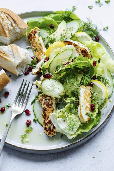 Halloumi salad withlettuce and cucumber — Stock Photo