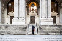 Biblioteca pública de Nueva York - foto de stock
