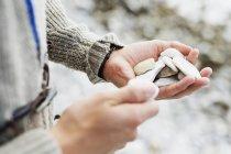 Mains tenant des pierres — Photo de stock