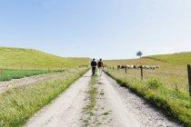 Чоловіки ходіння по дорозі посеред поля — стокове фото