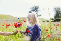 Womans hand giving wildflowers to girl — Stock Photo