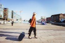 Donna d'affari con bagagli a piedi sulla strada della città — Foto stock