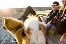 Пара с собаками отдыха — стоковое фото