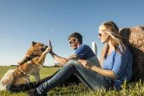 Paar spielt mit Hund — Stockfoto