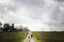 Людина прогулянки з собакою на грунтовій дорозі — стокове фото