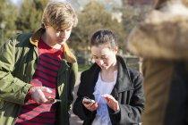 Teenage friends using smart phones — Stock Photo