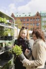 Female friends buying plants — Stock Photo