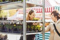 Female friends purchasing plants — Stock Photo