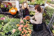 Mature women buying flower plants — Stock Photo