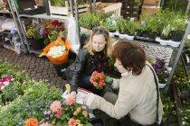 Reife Frauen kaufen Blumen Pflanzen — Stockfoto