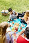 Freunde, Picknick im park — Stockfoto
