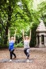 Junge Frauen praktizieren Yoga — Stockfoto