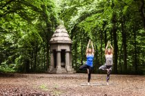 Jovens mulheres praticando ioga — Fotografia de Stock
