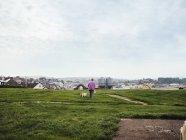 Жінка вигулює з собаками — стокове фото
