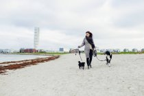 Woman walking with dogs — Stock Photo