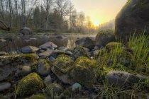 Flusso che scorre da rocce sul campo — Foto stock