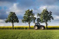 Trattore da alberi sul campo — Foto stock