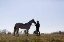 Frau sieht Pferd beim Stehen auf Feld an — Stockfoto