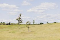 Golf cart on field against sky — Stock Photo