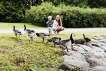 Woman with son watching geese — Stock Photo