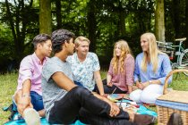 Amis, profiter de pique-nique dans le parc — Photo de stock