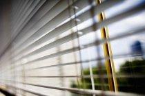 Close-up de persianas — Fotografia de Stock