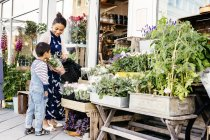 Mother with son choosing plants — Stock Photo