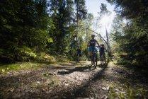 Мужчины катаются на велосипеде в лесу — стоковое фото