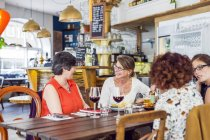 Women talking during lunch — Photo de stock
