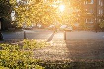 Sole che splende attraverso le foglie con irriconoscibile coppie che camminano sulla strada a Malmo, Svezia — Foto stock