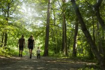 Son (2-3) with parents walking in forest — Stock Photo