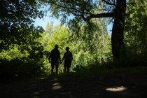 Silhueta de casal na floresta durante o dia — Fotografia de Stock