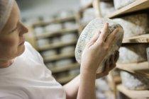 Femme mettant du fromage sur support de maturation — Photo de stock