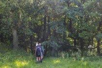 Сім'я, прогулянки в ліс денний час — стокове фото