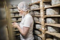 Frau legt Käse auf Reifungsregal — Stockfoto